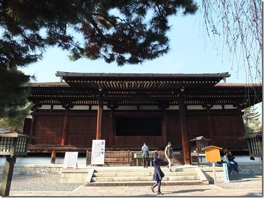 2017京都桜 476