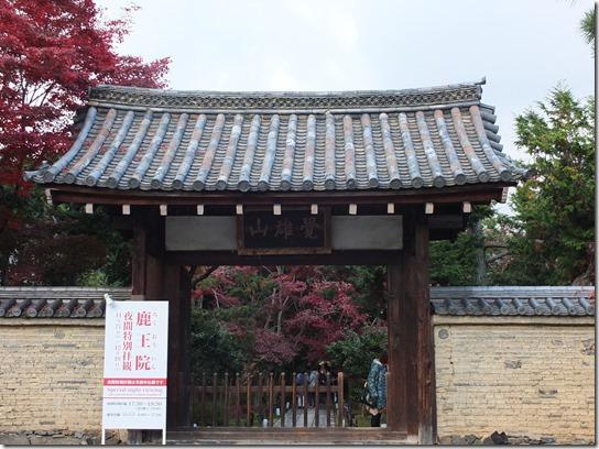 2016京都紅葉 515