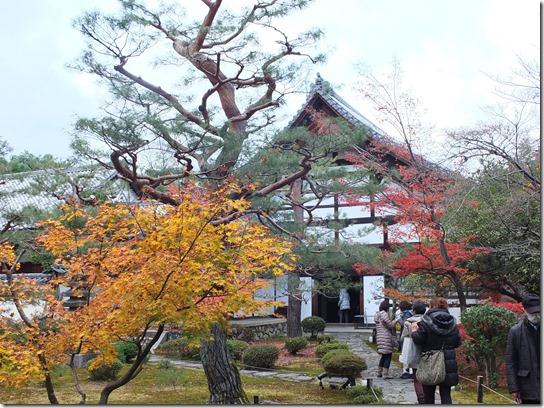 2016京都紅葉 536