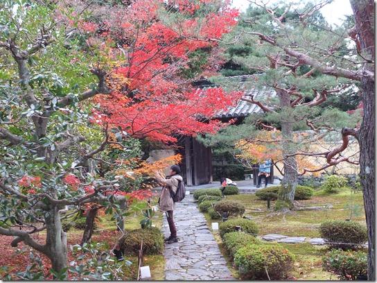 2016京都紅葉 553
