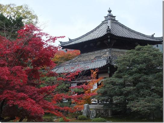 2016京都紅葉 573
