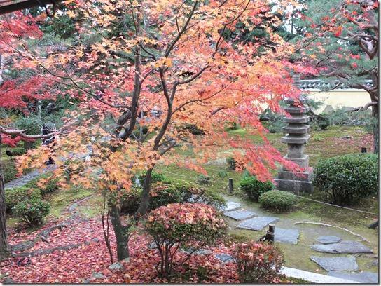 2016京都紅葉 576