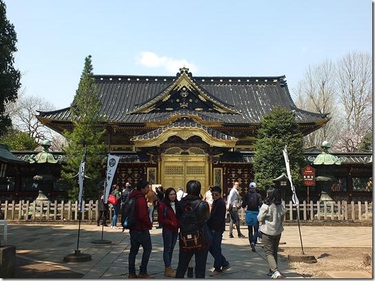 鎌倉 牡丹 桜 578