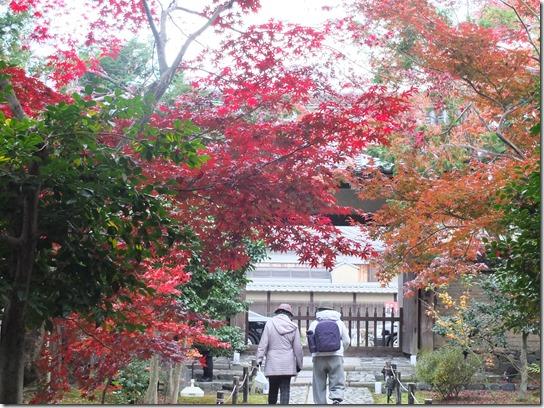 2016京都紅葉 589