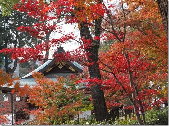 2016京都紅葉 618