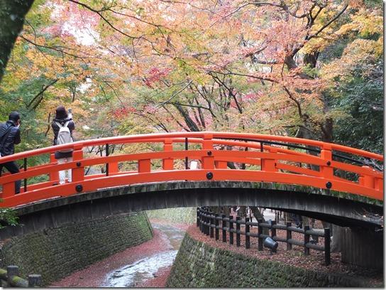 2016京都紅葉 631