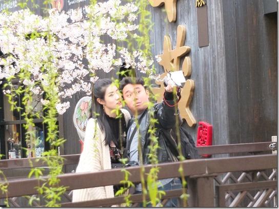 2017京都桜 683