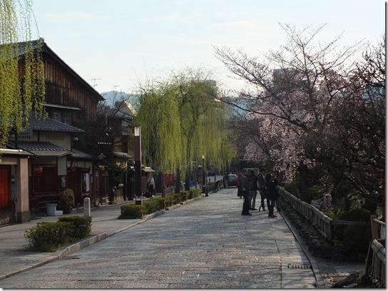 2017京都桜 705