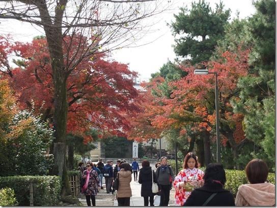 2016京都紅葉 713