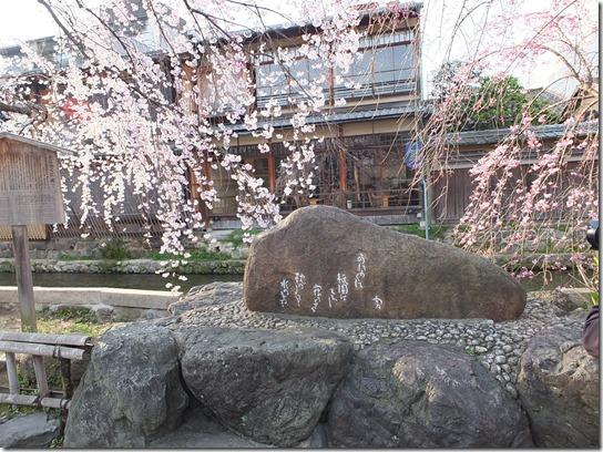 2017京都桜 724
