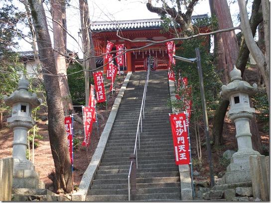 2017京都桜 782