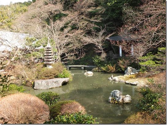 2017京都桜 803