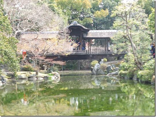 2017京都桜 849