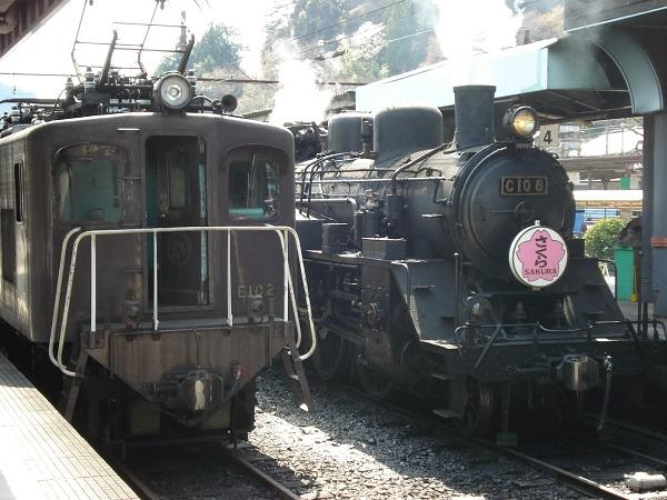3381大井川鉄道SL列車&家山の桜並木&ギネス認定蓬莱橋