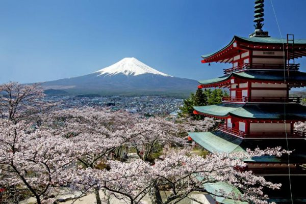 3709新倉山浅間公園の桜と西湖いやしの里根場